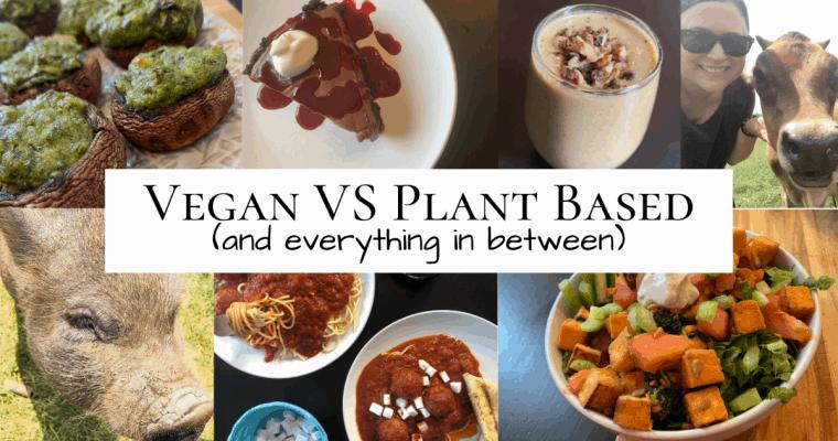 Vegan VS Plant Based